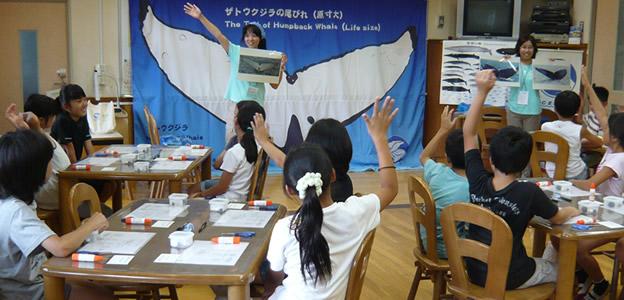海の環境学習教室 ―見て・触れて・作って・学べるー イルカのひみつ・クジラのふしぎ