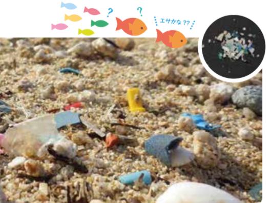 「プラスチック問題について考え合う会」を行いました